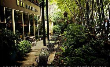 Tư vấn thiết kế quán cafe sân vườn nhỏ đẹp giữa lòng thành phố